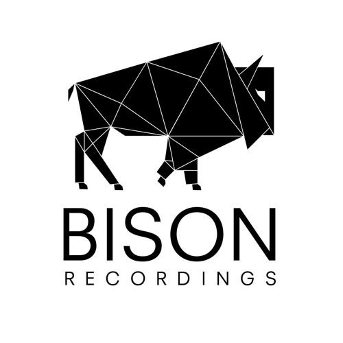 BISON's avatar