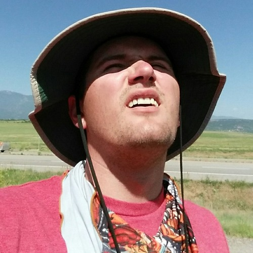 MetaLit's avatar