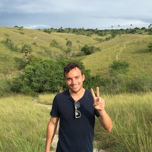 Matthew Onorato's avatar