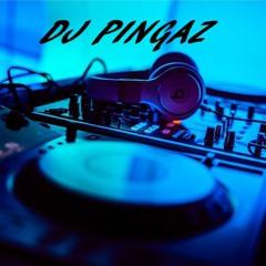 DJ PINGAZ