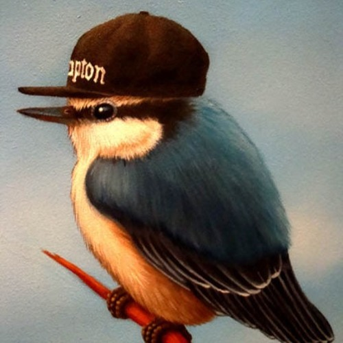 Real Hip-Hop Bird's avatar