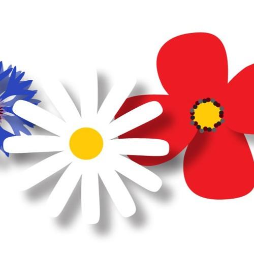 FlowersofWar's avatar