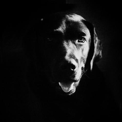 Lutchky's avatar