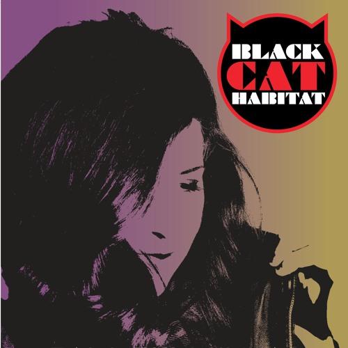 Black Cat Habitat's avatar