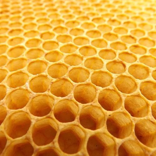 Honey Maker's avatar