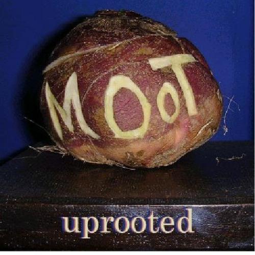 moot's avatar