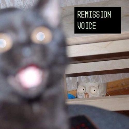 Remission Voice's avatar