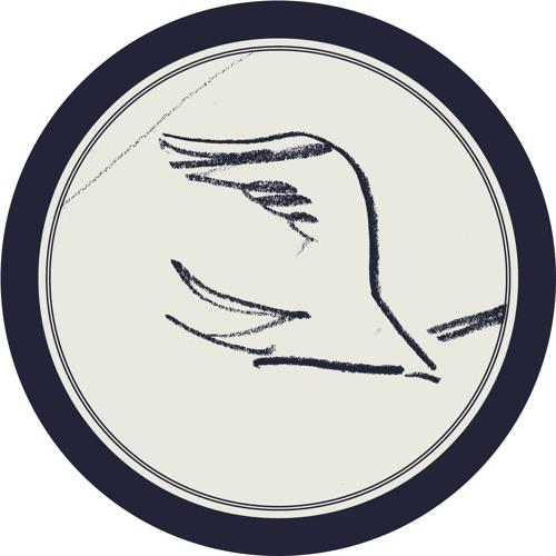 Tᴏᴍ Jᴀᴍᴇꜱ Sᴄᴏᴛᴛ / Sᴋɪʀᴇ's avatar