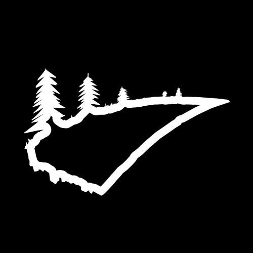 Roadmusic Records's avatar