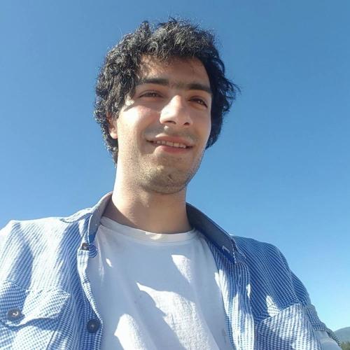 SinaMohseni's avatar