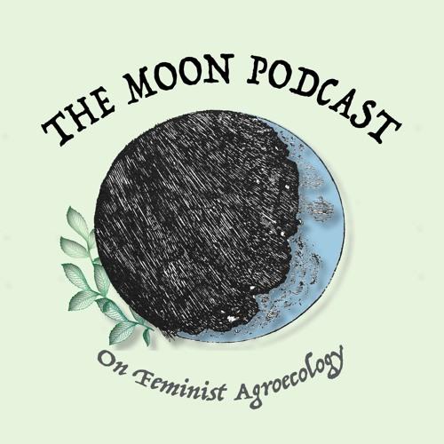 The Moon Podcast's avatar