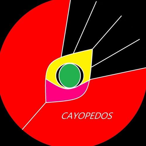 CAYOPEDOS's avatar
