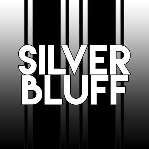 DJ SILVER BLUFF's avatar