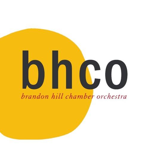 Brandon Hill Chamber Orchestra's avatar