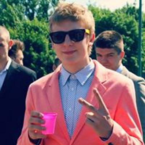 Lukas Petraitis's avatar