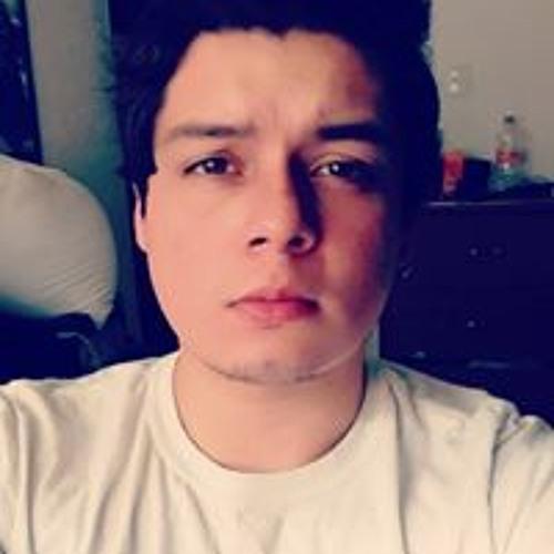Gustavo Gomez's avatar