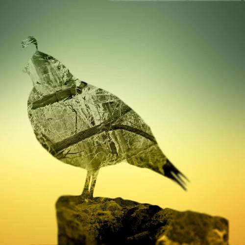 Queue Music's avatar