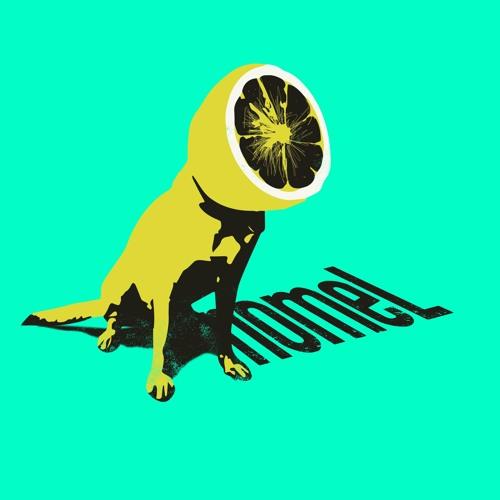 snomeL's avatar