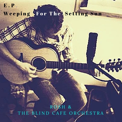 Rosh & the Blind Cafe Orchestra/Music In The Dark's avatar