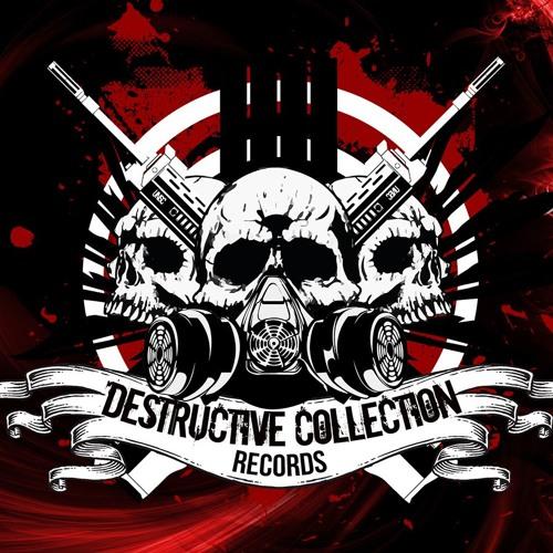Destructive Collection R.'s avatar