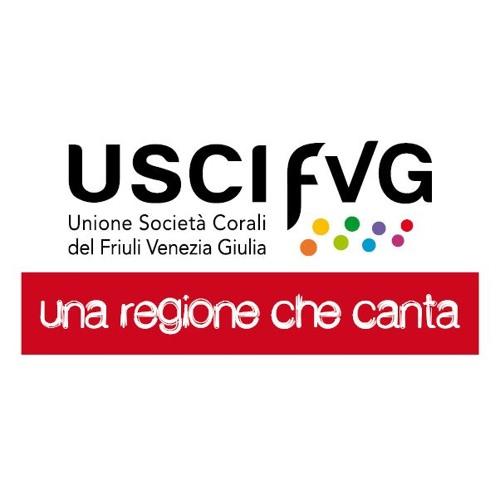USCI Friuli Venezia Giulia's avatar