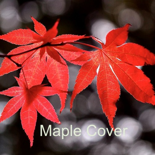 Maple Cover 2's avatar
