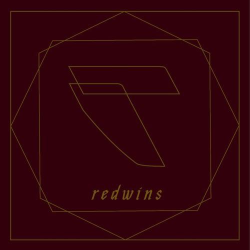 Redwins's avatar