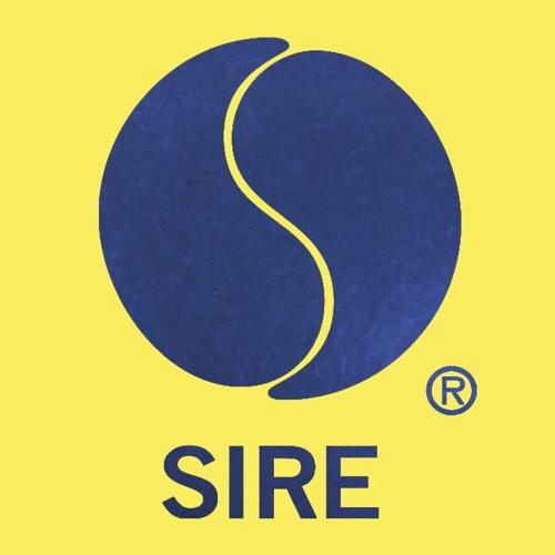 Sire Records's avatar