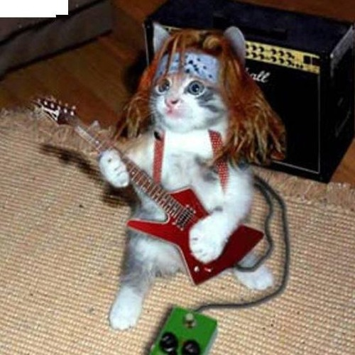Metallicat ✪'s avatar