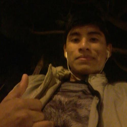 Wilson Pardo Layza's avatar