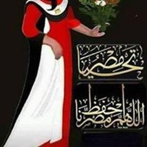 Ahmed Farouk's avatar