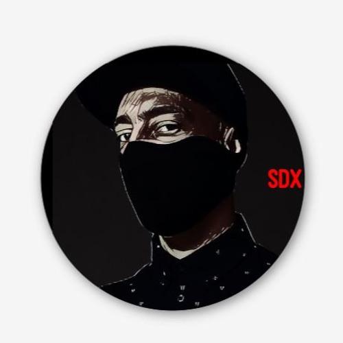 SDX's avatar