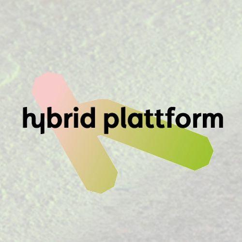 Hybrid Plattform's avatar