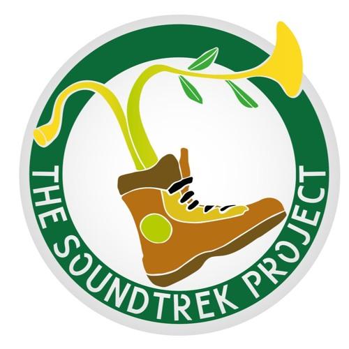 Soundtrek Project's avatar
