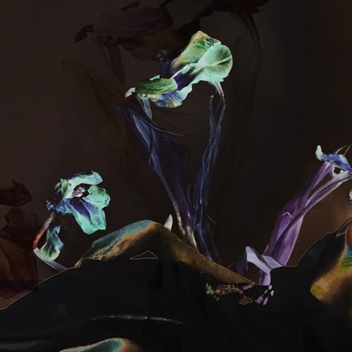 Cõvco's avatar