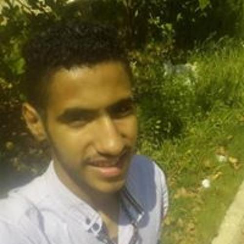 Youssef Mohamed's avatar