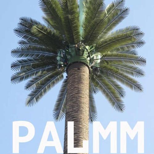 Palmmakusis's avatar