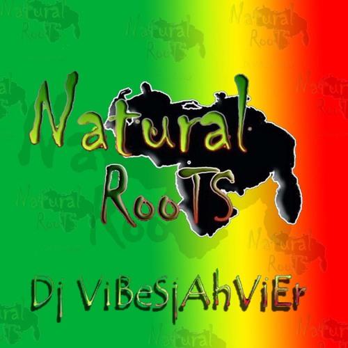 Vibesjahvier NaturalRoots's avatar