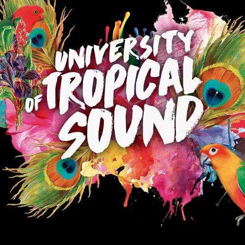 University of Tropical Sound's avatar