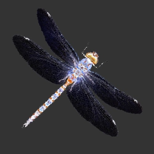 Dragonfly Night's avatar