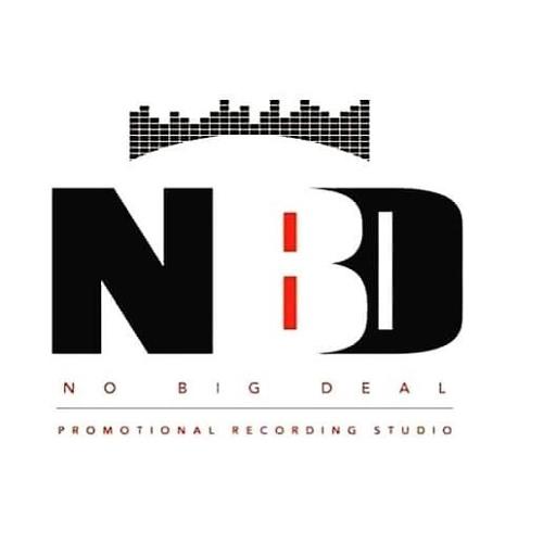 NoBigDeal Studio's avatar