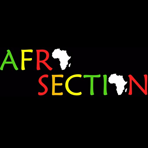 AfroSection's avatar