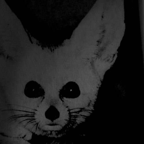 Lily Mai's avatar