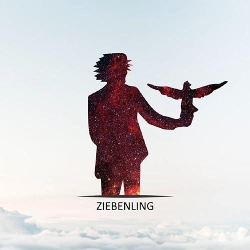 Ziebenling's avatar
