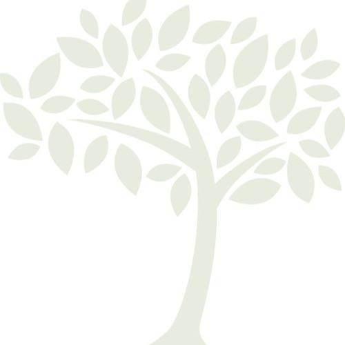 Caregiver Crossing Radio's avatar