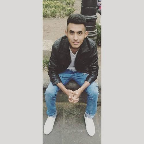 Fernando Avila G's avatar