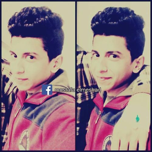 Mostafa Elmeshad's avatar