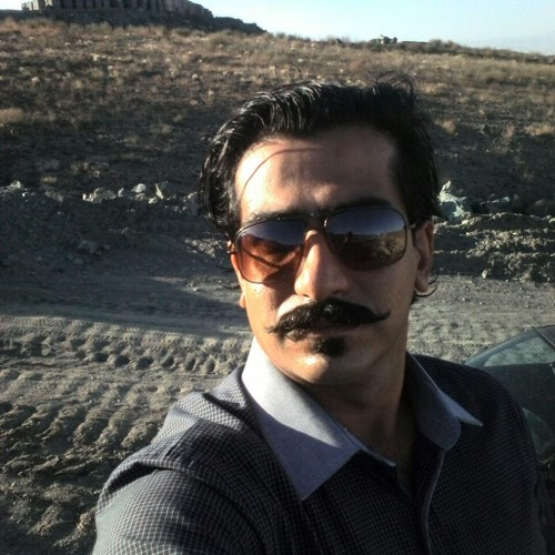 Saeed Ghafoorian 1's avatar