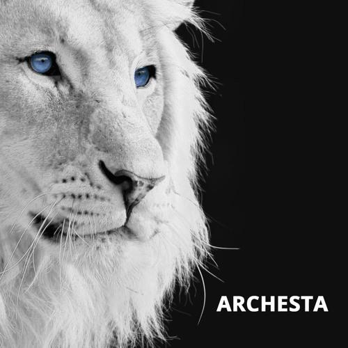 Archesta's avatar