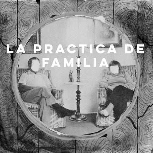 La Practica De Familia's avatar